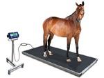 Paardenweegschaal W-1500